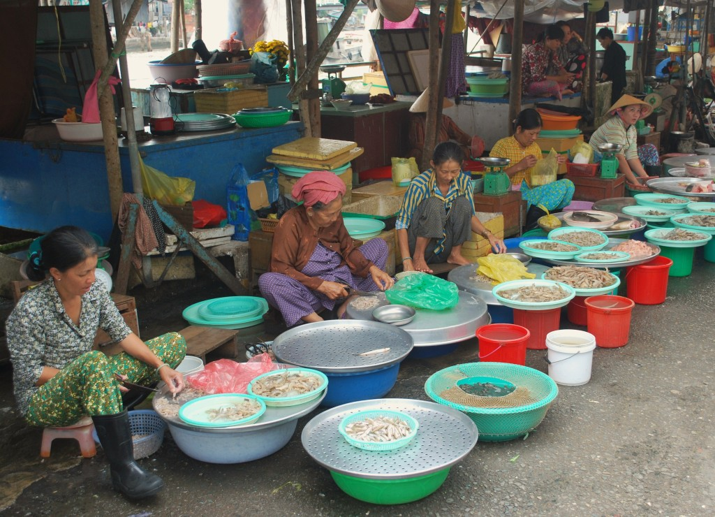 A Cambodian food market along the Mekong.