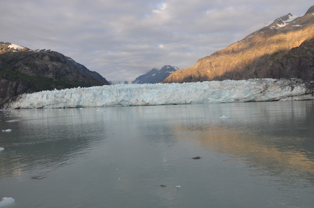 Un-Cruise Adventures often spends a whole day in Glacier Bay seeing ice and animals close up.